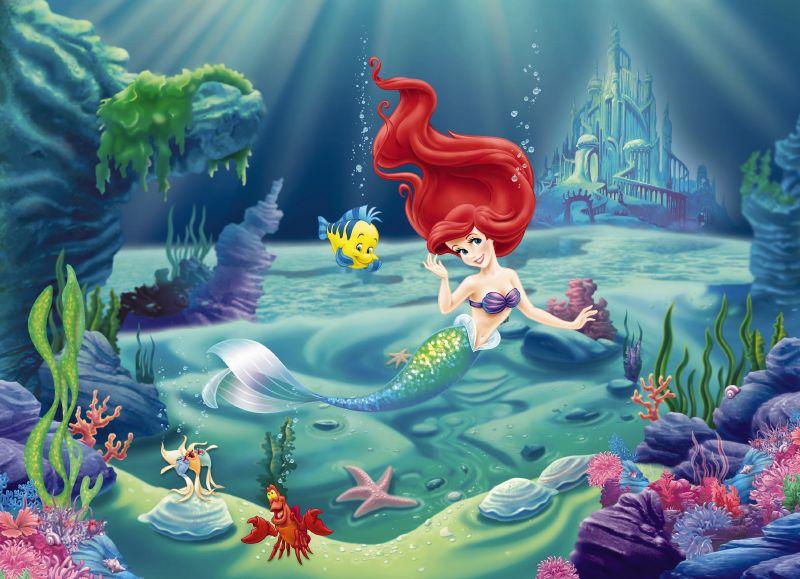 Image of   Ariel 304-463