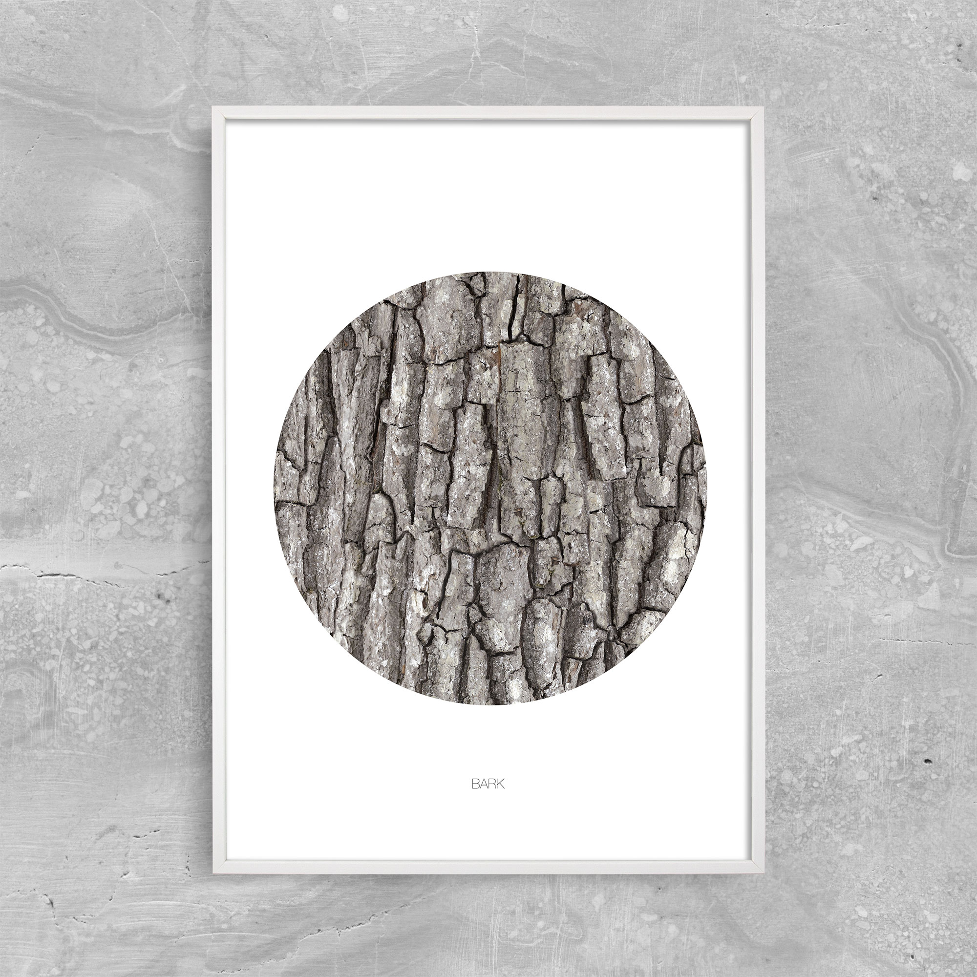 Image of   BARK - CIRCLE