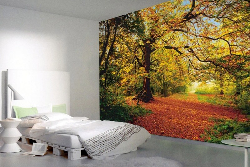 Image of   Autumn Forest