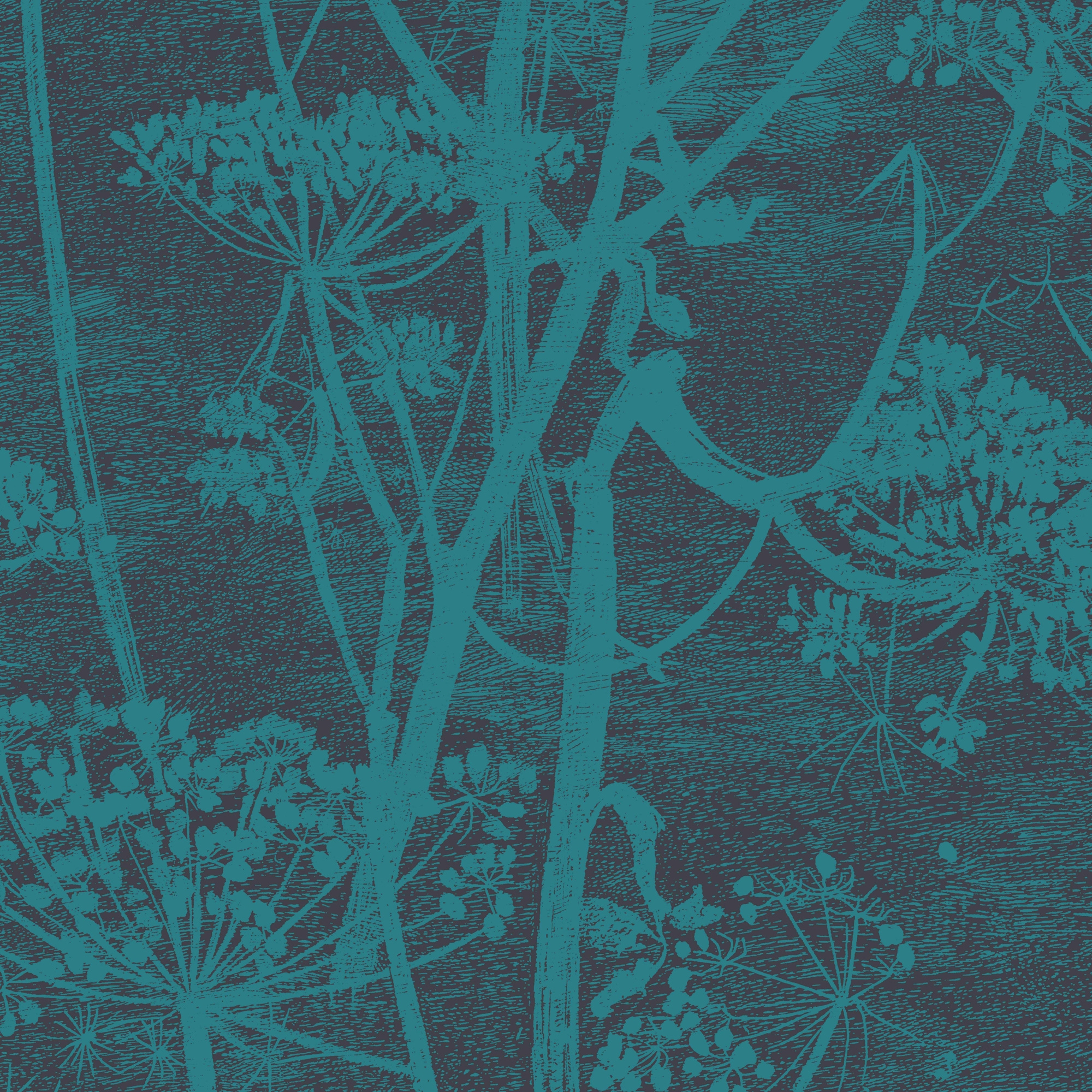 Image of   Cow Parsley - Teal