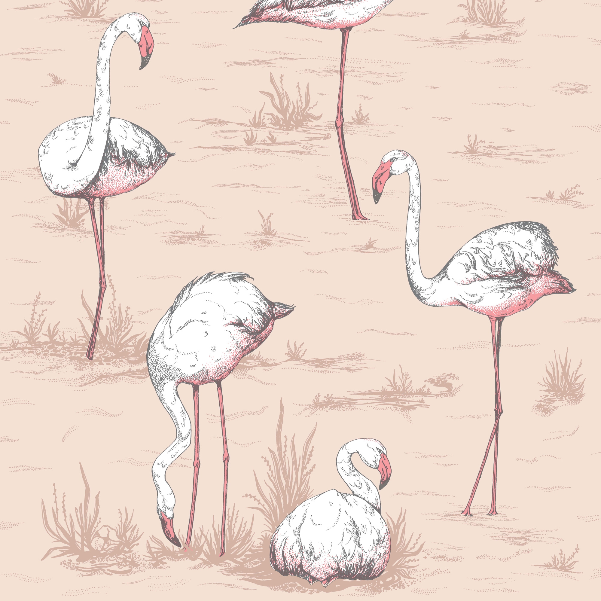 Image of   Flamingos - Ballet Slipper