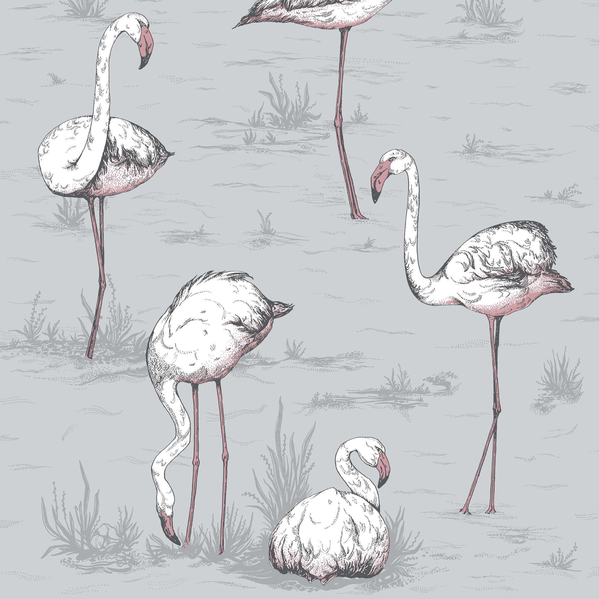 Image of   Flamingos - Lilac Grey
