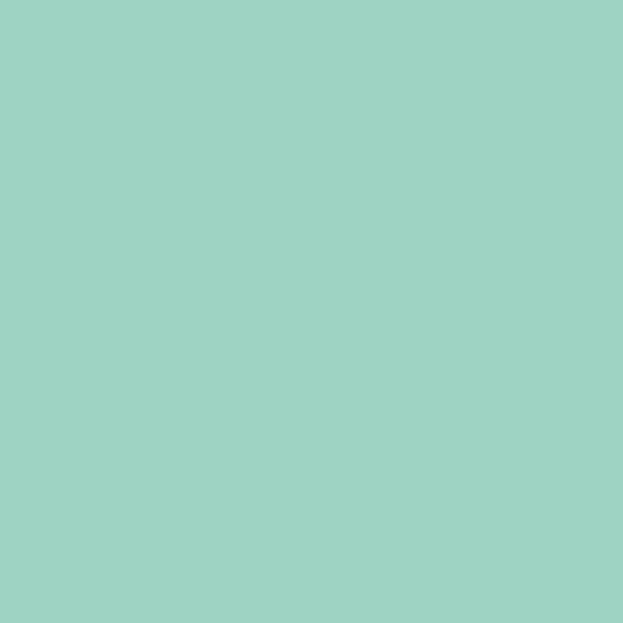 Image of   Ensfarvet folie-Mint-2 meter rulle-Blank-45 cm