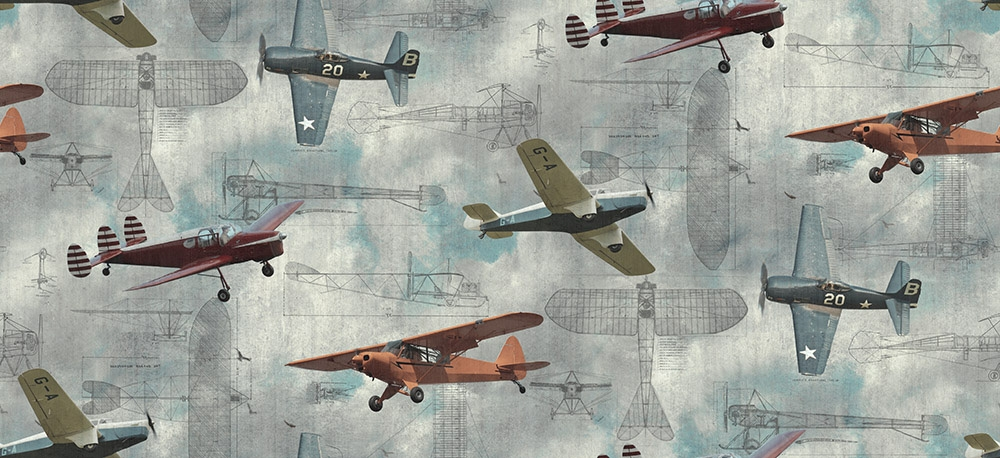 Image of   Aero Show
