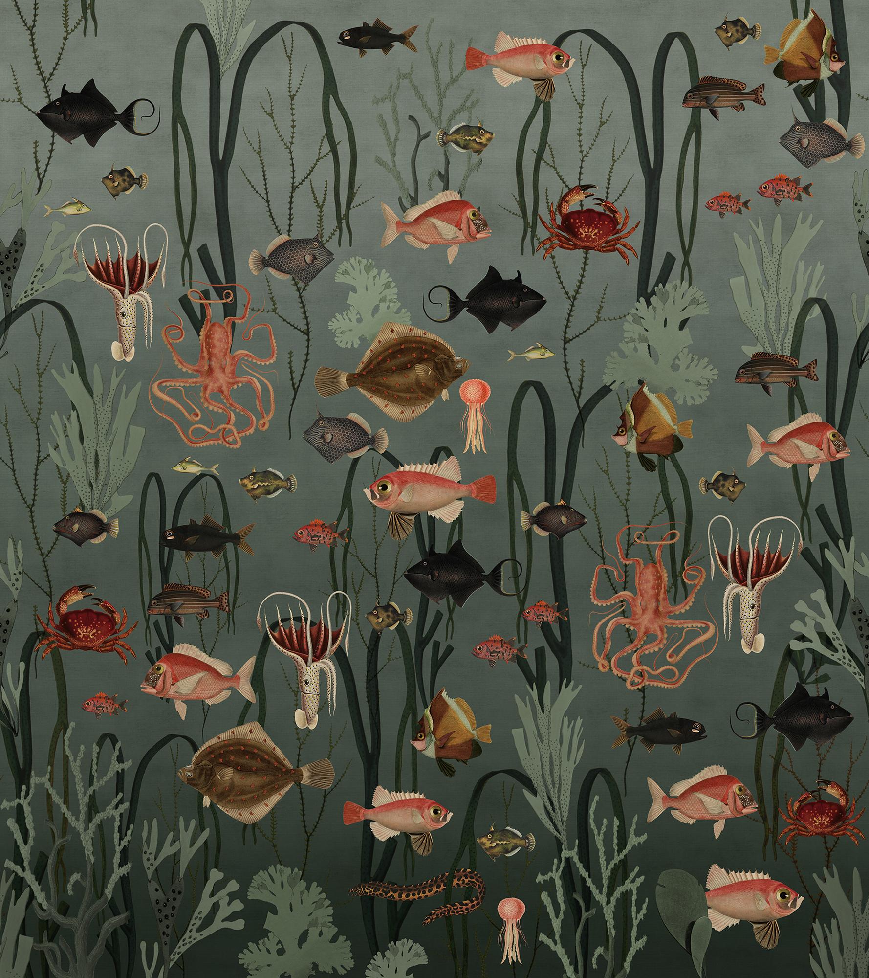 Image of   Aquatic Life - Oxygen