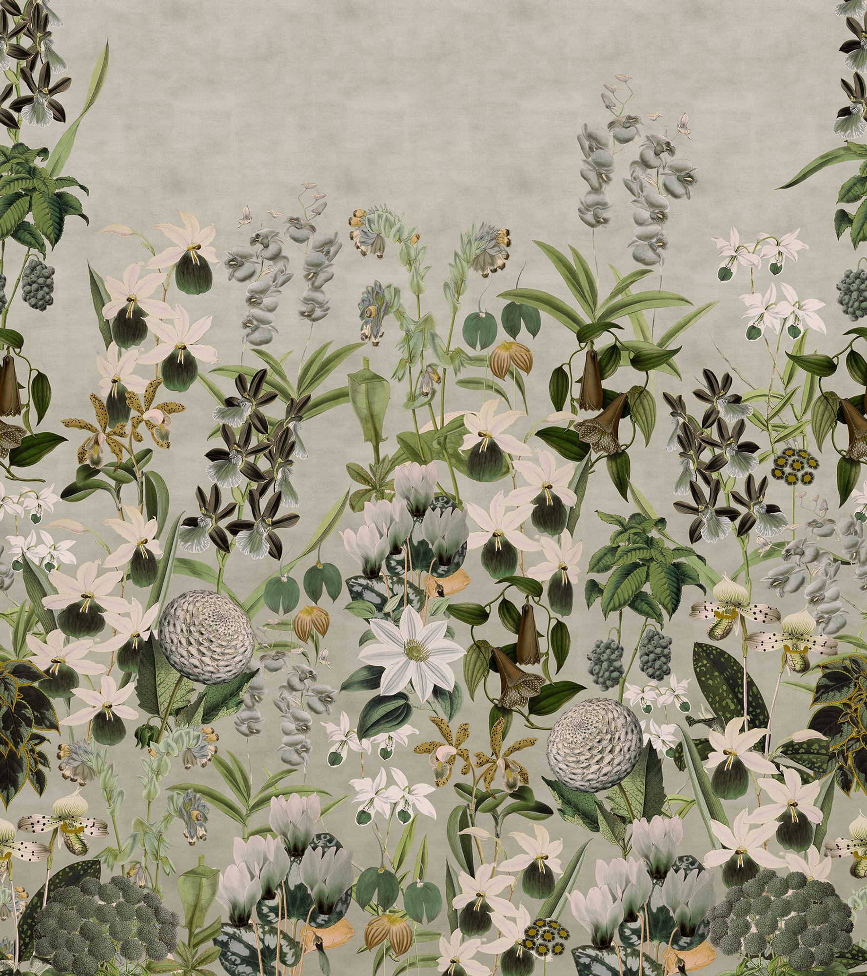Image of   Alice's Garden - Dusk